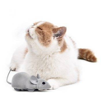 Cat Electric Mouse with App Control Cats Training
