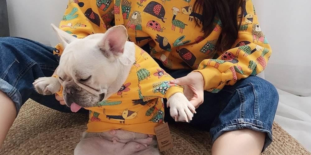 Dog and Owner matching sweatshirt