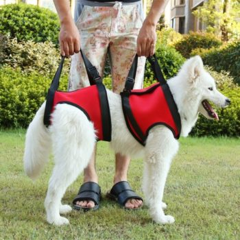 Dog Lift Support Vest for Mobility Impaired Collars, Harnesses & Leashes For Dogs Sick or Mobility Impaired